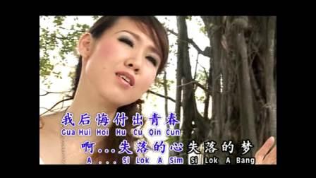 张美玲-05-失落的梦(负心的人)【VCD超清版】