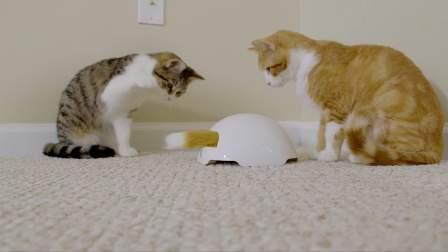 【2017新品】狐狸窝 - PetSafe* Fox Den自动逗猫器