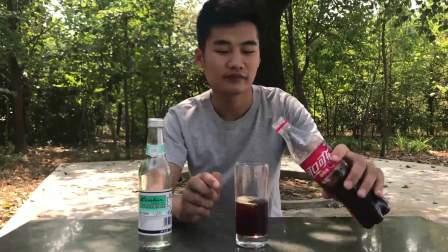 山东小伙张师傅试喝网传最难喝白花蛇草水和网红可乐