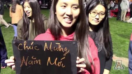 亚利桑那大学学生缓解期末考试压力的活动小视频