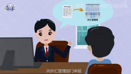 枫岚动漫系列《国际收支统计申报实例—个人篇》