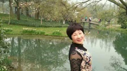 2016年3月18号~杭州太子湾賞花