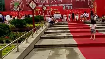 全球微商只有一个节日:53微商节,走红地毯(180503) - 微信视频