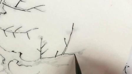 跟乐知轩主(耿老师)学工笔画—乌桕文禽图(1)