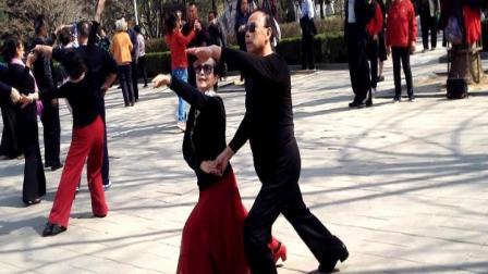 交谊舞慢四《心上的罗加》暖阳—长相依展示(百花公园音乐喷泉广场)