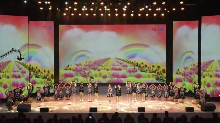 2019衡阳市雁峰区成龙成章小学艺术展演活动