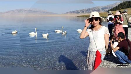 2019新疆之旅🚴喀纳斯_赛里木湖_巴音布鲁克草原