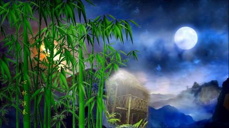 月光下的凤尾竹 心林演奏