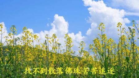 (佛教歌曲)新唱佛珠(佛教音乐)
