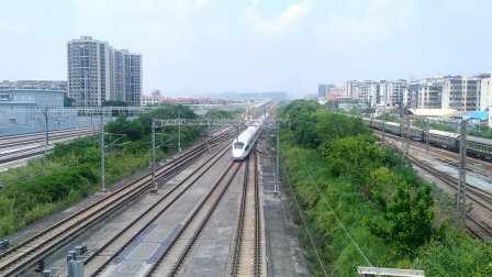 2020年9月1日,G1109次(武汉站—广州南站)本务中国铁路郑州局集团有限公司郑州动车段郑州东动车运用所CRH380B-5649广州北站通过