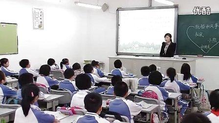 小学二年级语文优质课展示上册《纸船和风筝》人教版刘