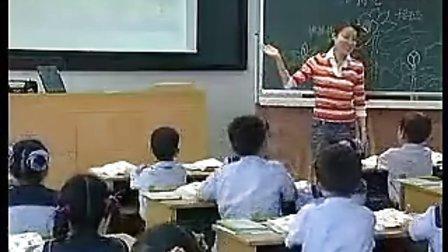 [沪教版][语文][小学][二年级][上册][梁晓]《荷花》