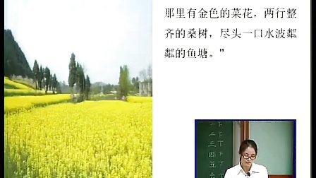 散步罗湖区大望小学初中一年级语文优质课