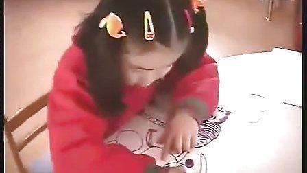 大班美术 绘画(幼儿园大班主题教学优质课视频展示专辑)