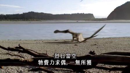 与恐龙同行(4)空中霸主