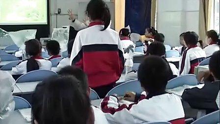 七年级生物北师大版蒸腾作用课堂实录与教师说课.mp4