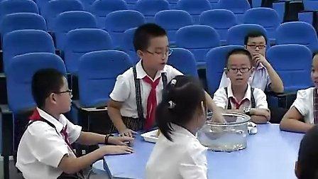 小学三年级科学优质课视频下册《把固体放入水中》闫玲