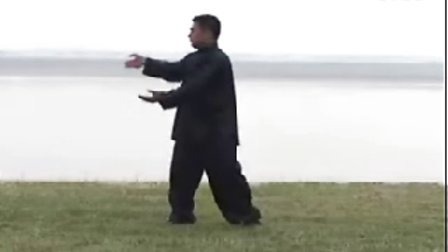 【侯韧杰  TaiJi  精华篇】之 天王大老虎的一路拳法