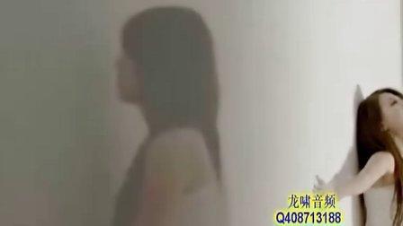 龙啸音频QQ408713188——一个女人的伤感表白......