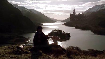 哈利·波特与密室 剧场版预告片 1080p