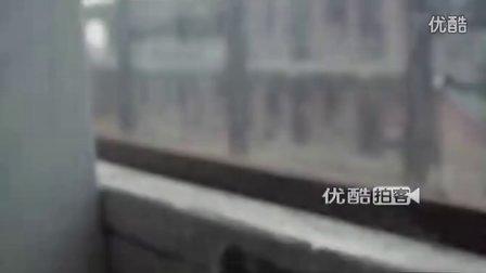 【拍客】小壁虎趴窗台捉蚊子受惊扰跳楼
