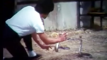 香港经典怀旧古装武打功夫动作片《龙门五铁卫》