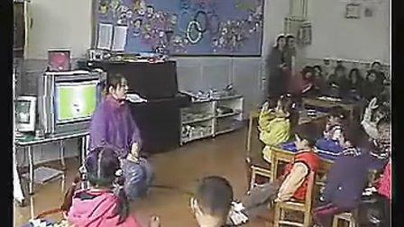 大班科学体验一分钟幼儿园大班主题教学优质课视频展示专辑