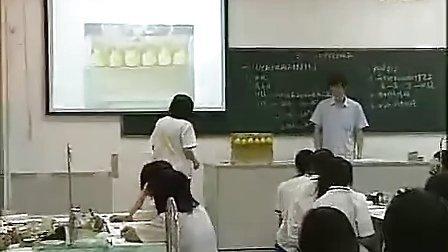 4《化學能与电能》东莞高级中学邓小林 2010年广东省高中化學優質課评比视频