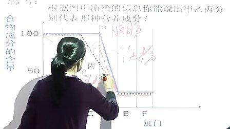 九年级科学电子白板《食物的消化和吸收》浙教版郑老师