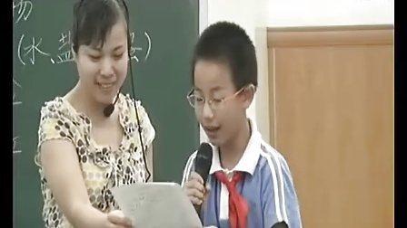 鸡蛋浮起来了(情景作文) 向伶俐_小学五年级语文优质课