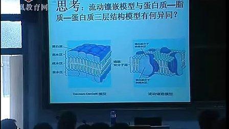 细胞膜流动镶嵌模型罗玲- 2011年江苏省高中生物优课评比高一组