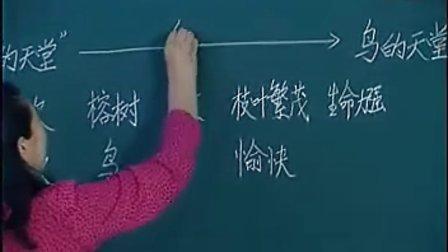 小学四年级语文优质课视频鸟的天堂02