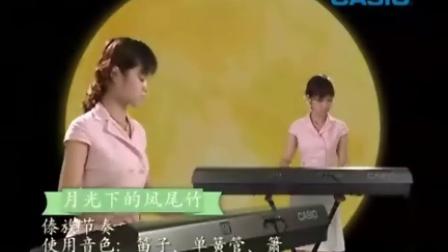 CASIO电子琴功能演奏示范1
