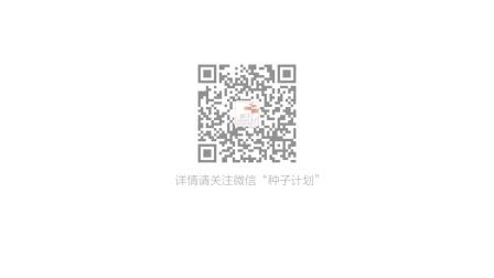 腾讯大申网总裁王栋访谈