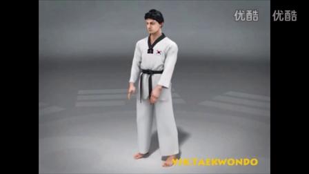 跆拳道品势太级一章3D版 动画版