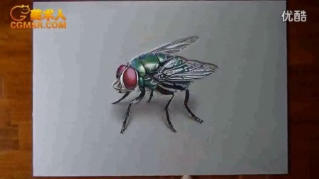 3D绘画How I draw a fly_标清