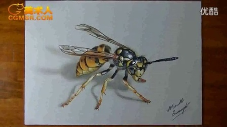 3D绘画How I draw a wasp_标清