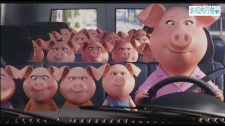 《欢乐好声音》电视预告 动物界超魔性唱歌选秀