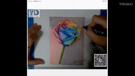 【艺达】彩铅零基础入门教程(超写实花卉之五彩玫瑰)