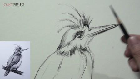 素描鸟的表现技法(对鸟的大形体和羽毛的描绘) (一)