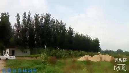 【音乐视频】鸟瞰新泰湿地保护区