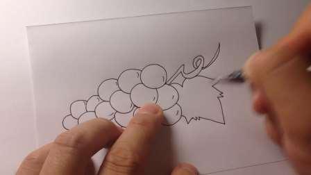 儿童卡通.水果葡萄简笔画