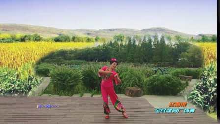 红高梁 表演 个人版 杭州红叶广场舞队
