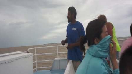 【快7岁】2-13哈哈坐快艇回游轮,船员喂追随快艇的海鸥海鸟MAH08372