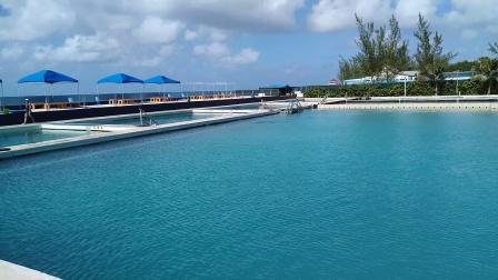 【6岁半】2-15哈哈参观加勒比海开曼群岛旅游圣地海豚公园VID_141922