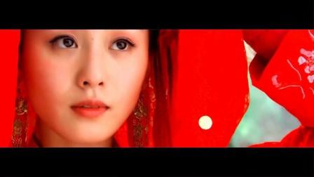 《待續》牡丹终归身为中国花王