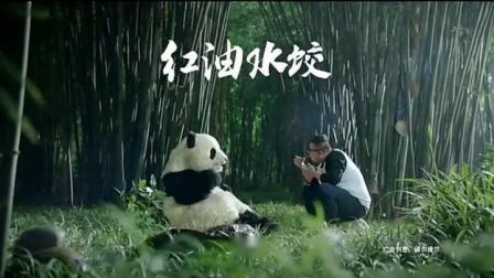 三全状元水饺广告---熊猫篇