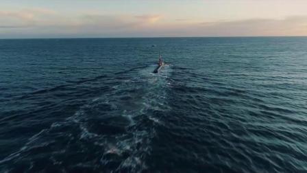 瑞典萨博集团与荷兰达门造船集团联手开发远征潜艇以替代海象级潜艇