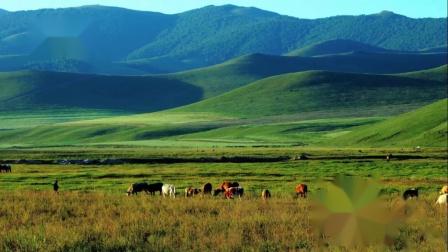 蓝天草原《陪你一起看草原》很好听的草原歌曲