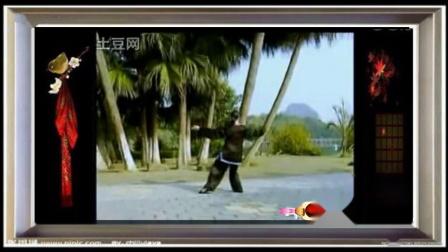 侯雯陈式56式太极拳(重配乐)